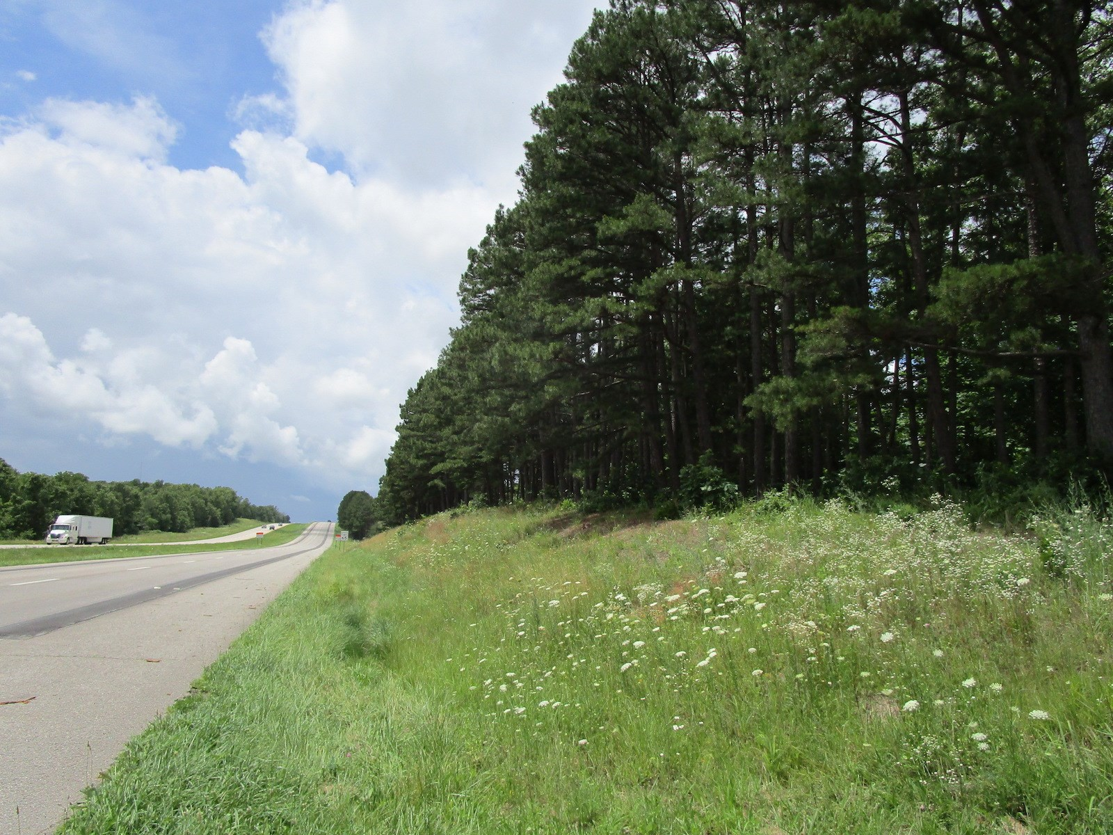 Land with US Highway Frontage in the Missouri Ozarks