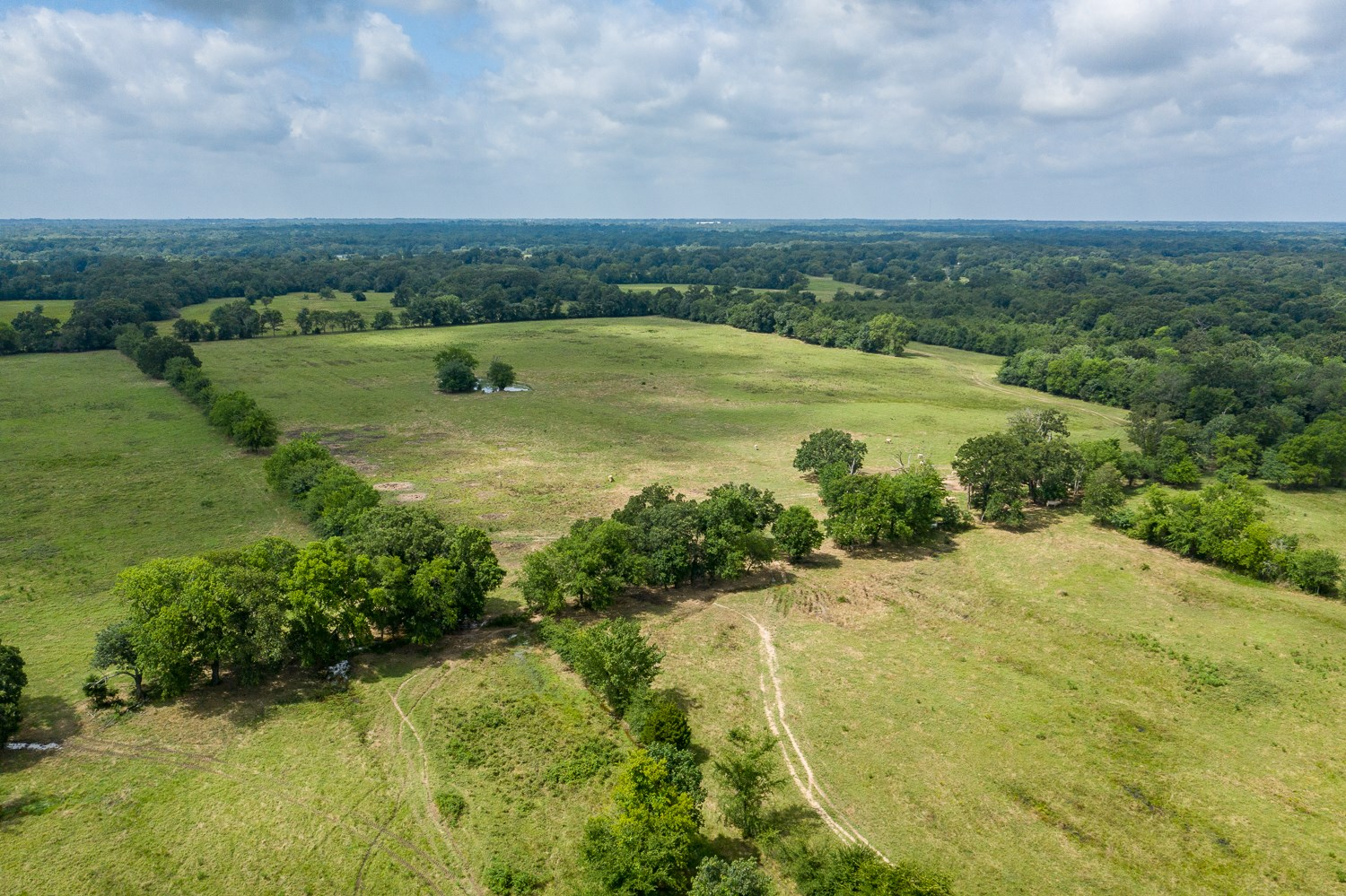 East Texas Pasture Land Hardwoods Hunting North of Emory TX