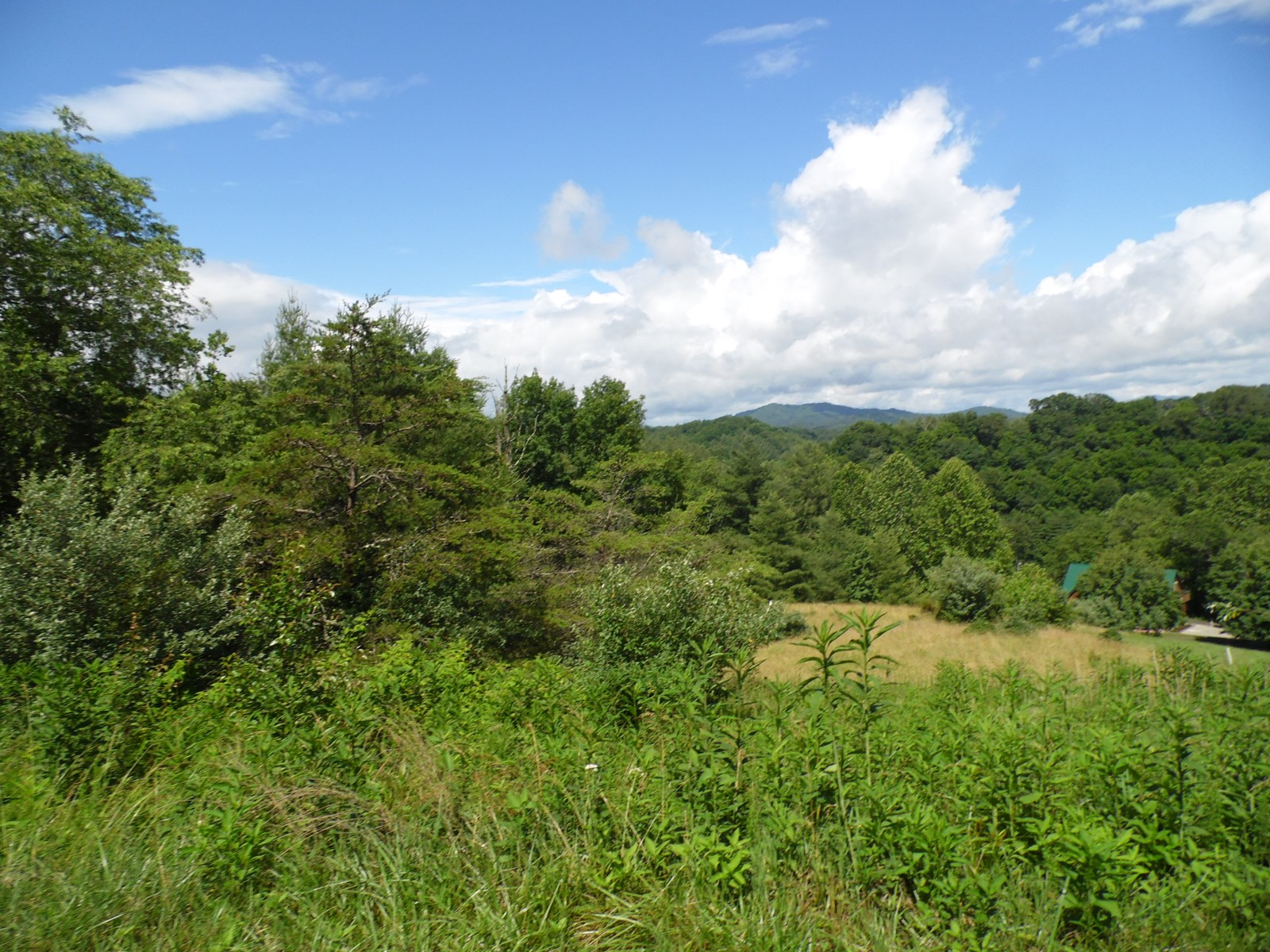 Gently Sloping Building Lot Near New River