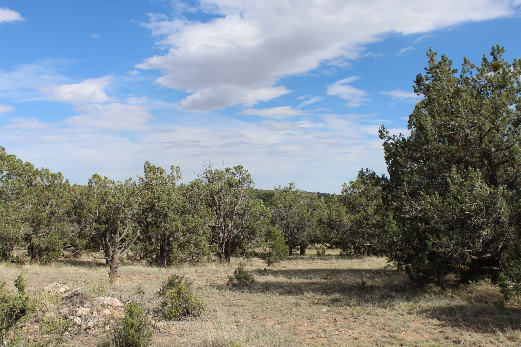 Remote Land with easy access Northern Arizona