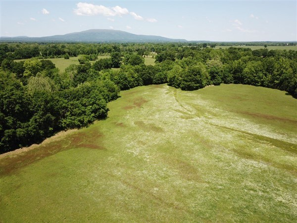 SUGAR LOAF CREEK 40 ACRES – FISHING, HAY CROPS, DUCK, GEESE