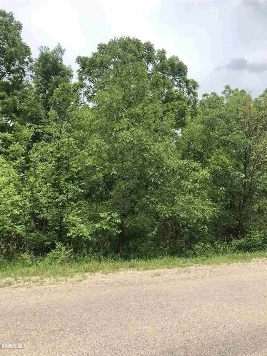Build-able Lot in City of Galena IL