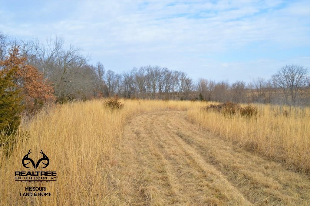 Chillicothe, MO Recreational Farm with CRP Income & Hunting