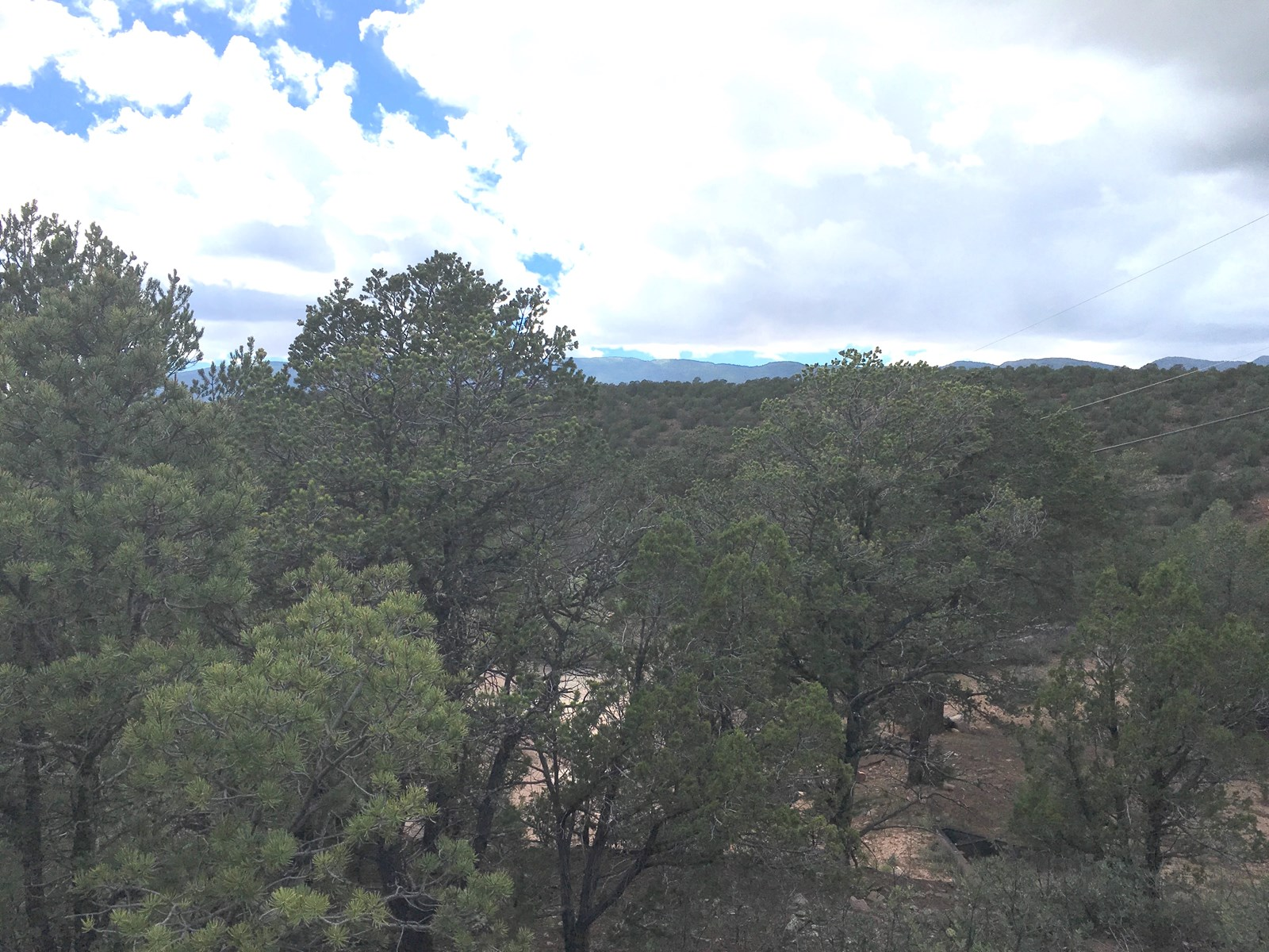 Central NM Wooded Residential Lot For Sale in Tijeras Canyon