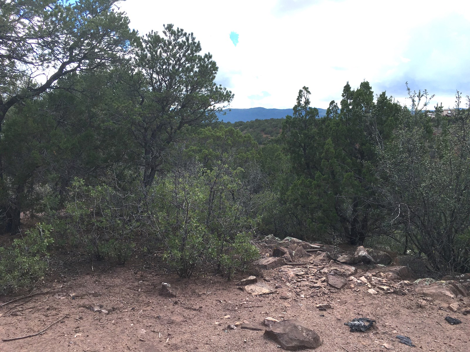 Central NM Wooded Acreage For Sale in Tijeras Canyon