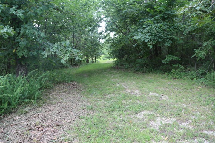 11 acres with Electric, Septic, and Well in Oregon Co. MO