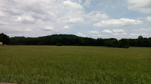 Farm with Acreage & House, Located in Franklin, Tennessee