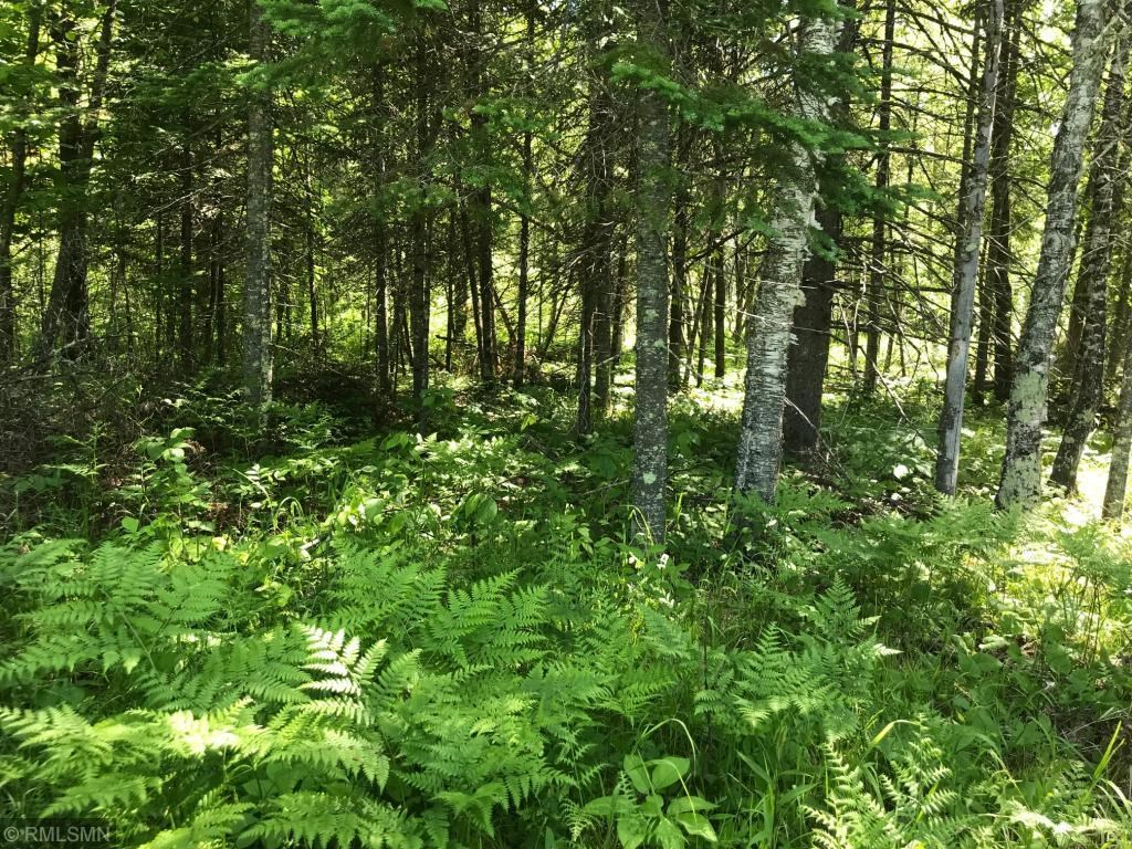 Wooded Acreage For Sale Near Nemadji, Hunt, Northern MN Land