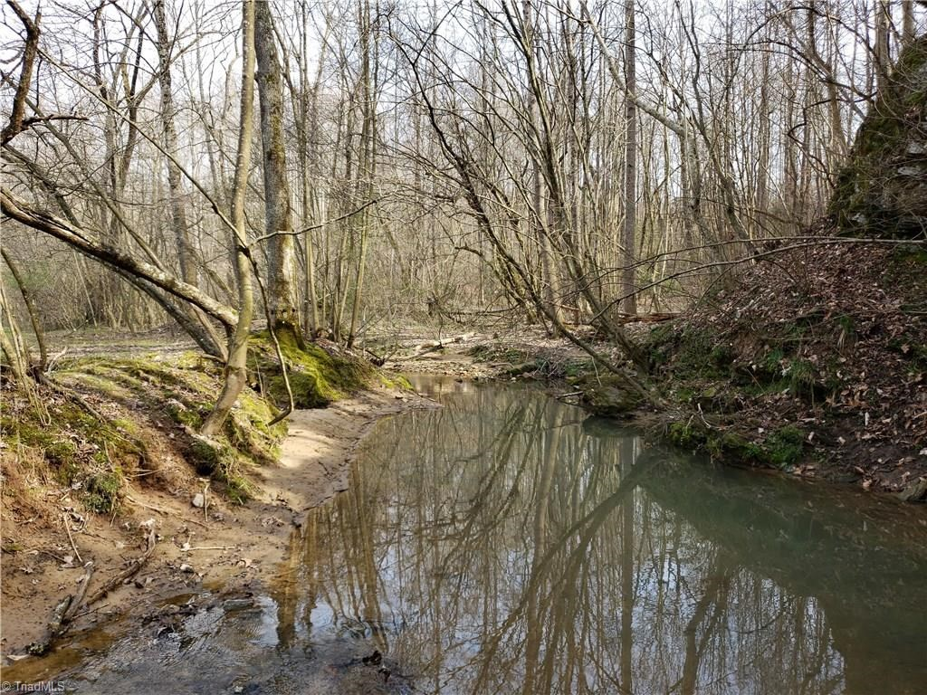 21 +/- acres with mature timber, springs, creek in Dobson NC