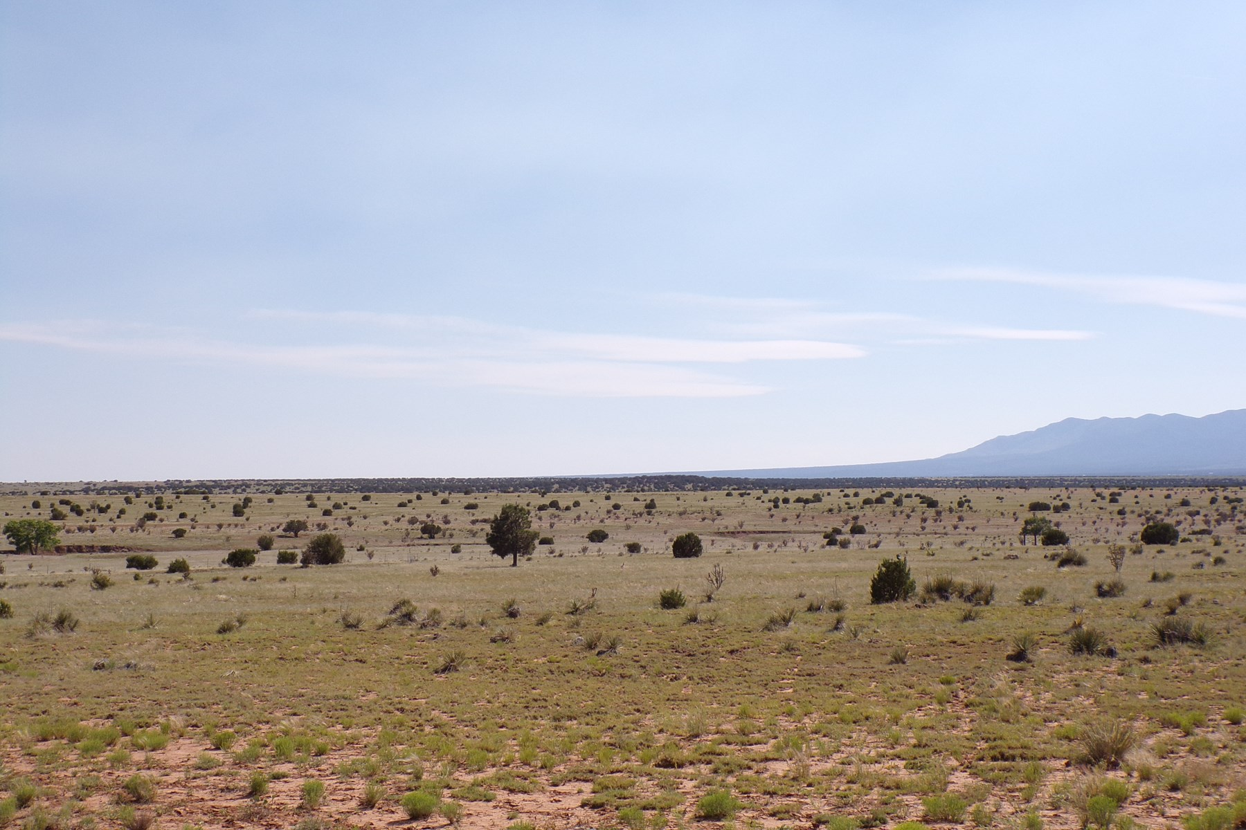 NM Pasture land For Sale near Mountainair Torrance County