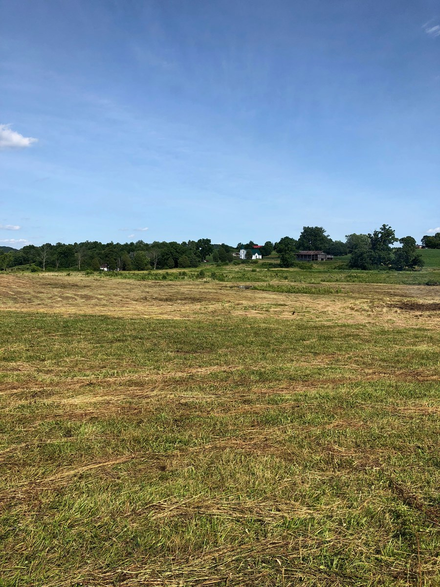 .75 Acres Acres Unrestricted Land in East Tn For Sale