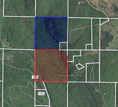 76 Acres on Little Red River For Sale