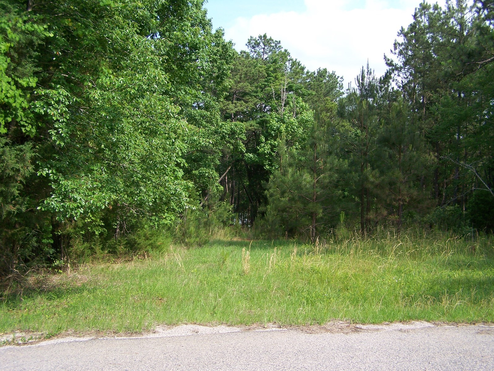 Building Lot in Winnsboro, SC
