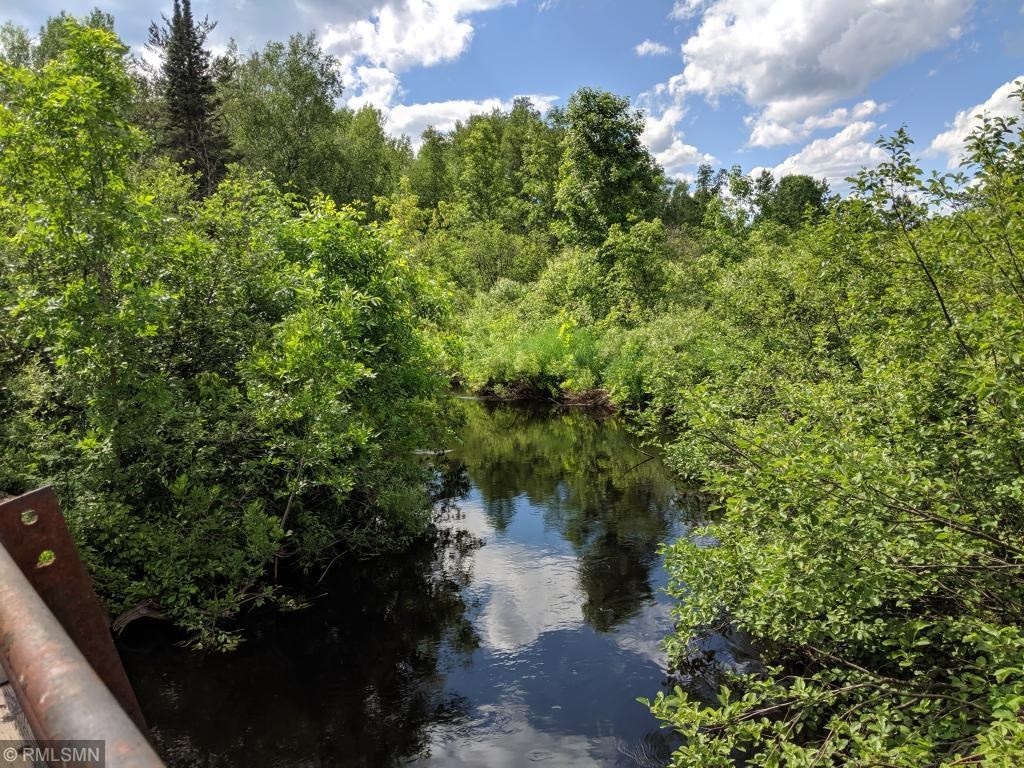 Riverfront 40 Acres For Sale Northern Minnesota Acreage, MN