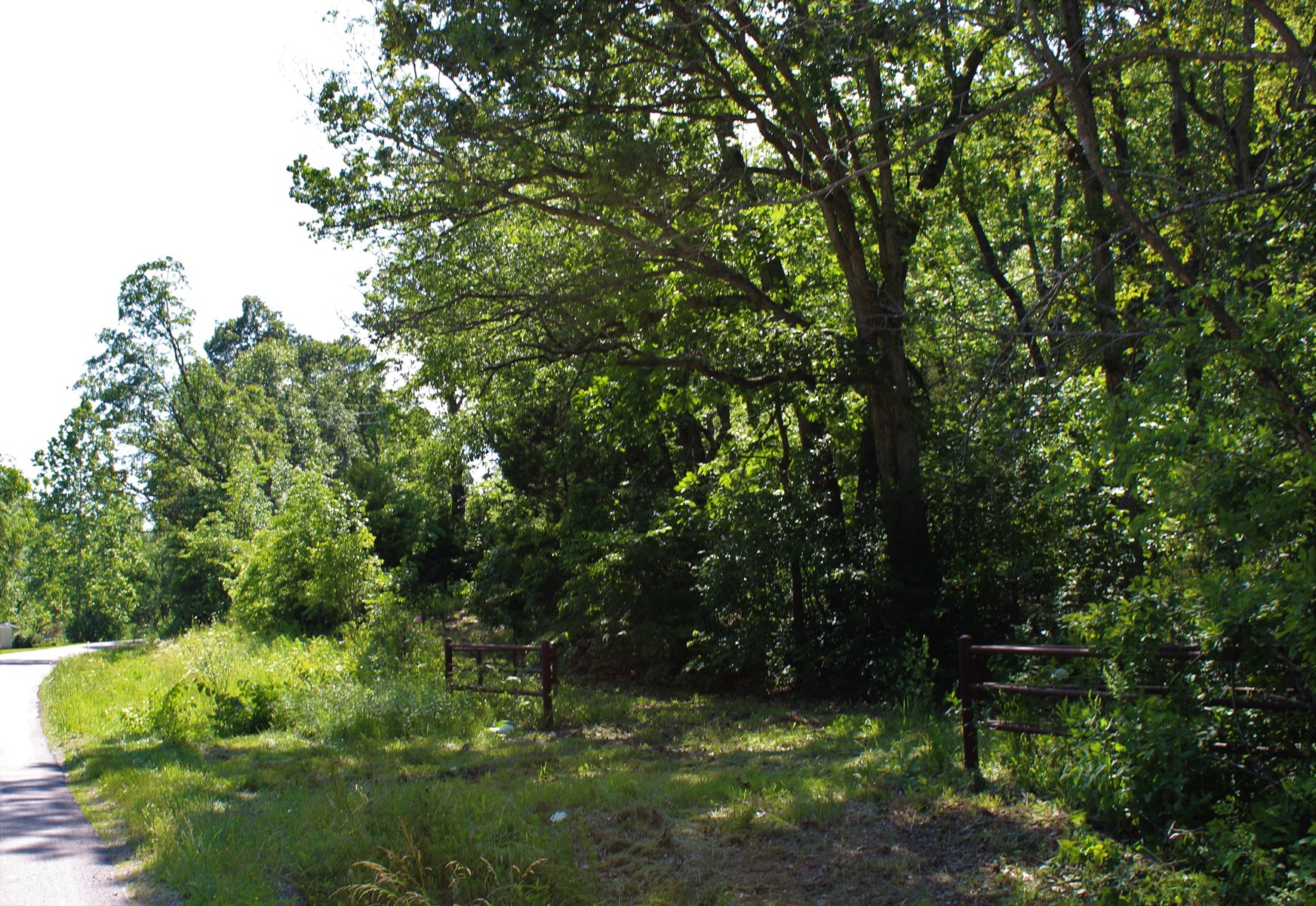 Timber, Recreation, & Hunting Land For Sale in Southern MO