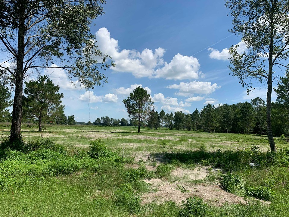 VACANT LAND READY FOR HOME - Chiefland, Florida