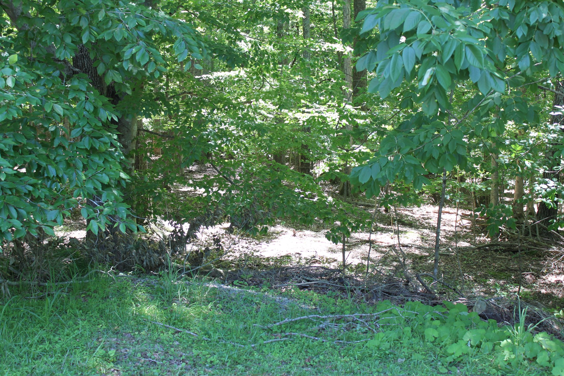 Wooded Off-Water Lot At Smith Mountain Lake