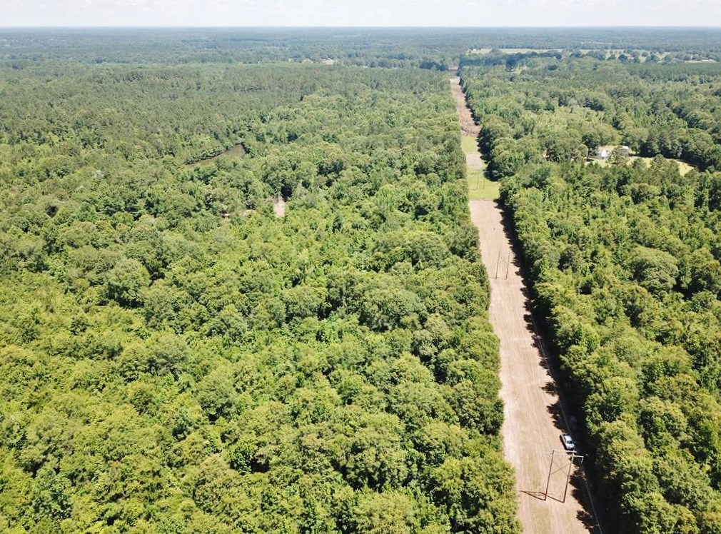 40 Acre Small Hunting Tract Near LA/ MS State Line Osyka, MS