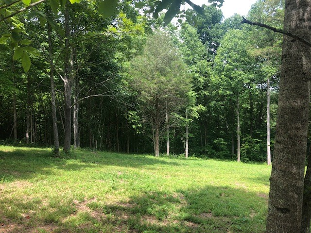 Williamson County Land For Sale