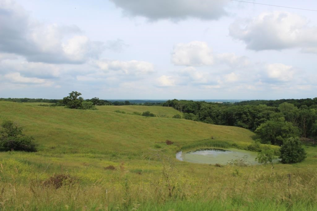 Cattle Ranch with Farm House in Macon County MO with Hunting