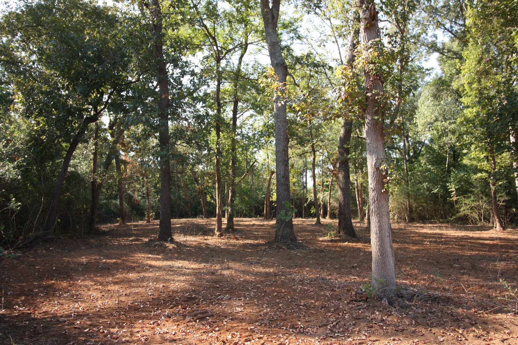 Unrestricted Land for Sale in Leon County, TX - 2.48 Acres