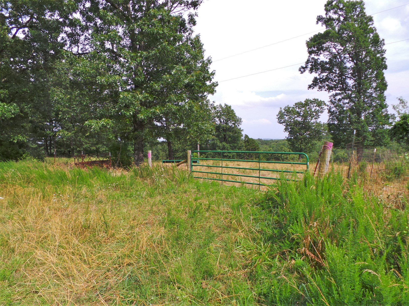 FENCED/CROSS-FENCED PASTURE AT BULL SHOALS LAKE