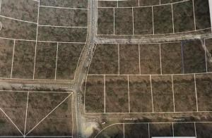 Horseshoe Bend Lot for Sale