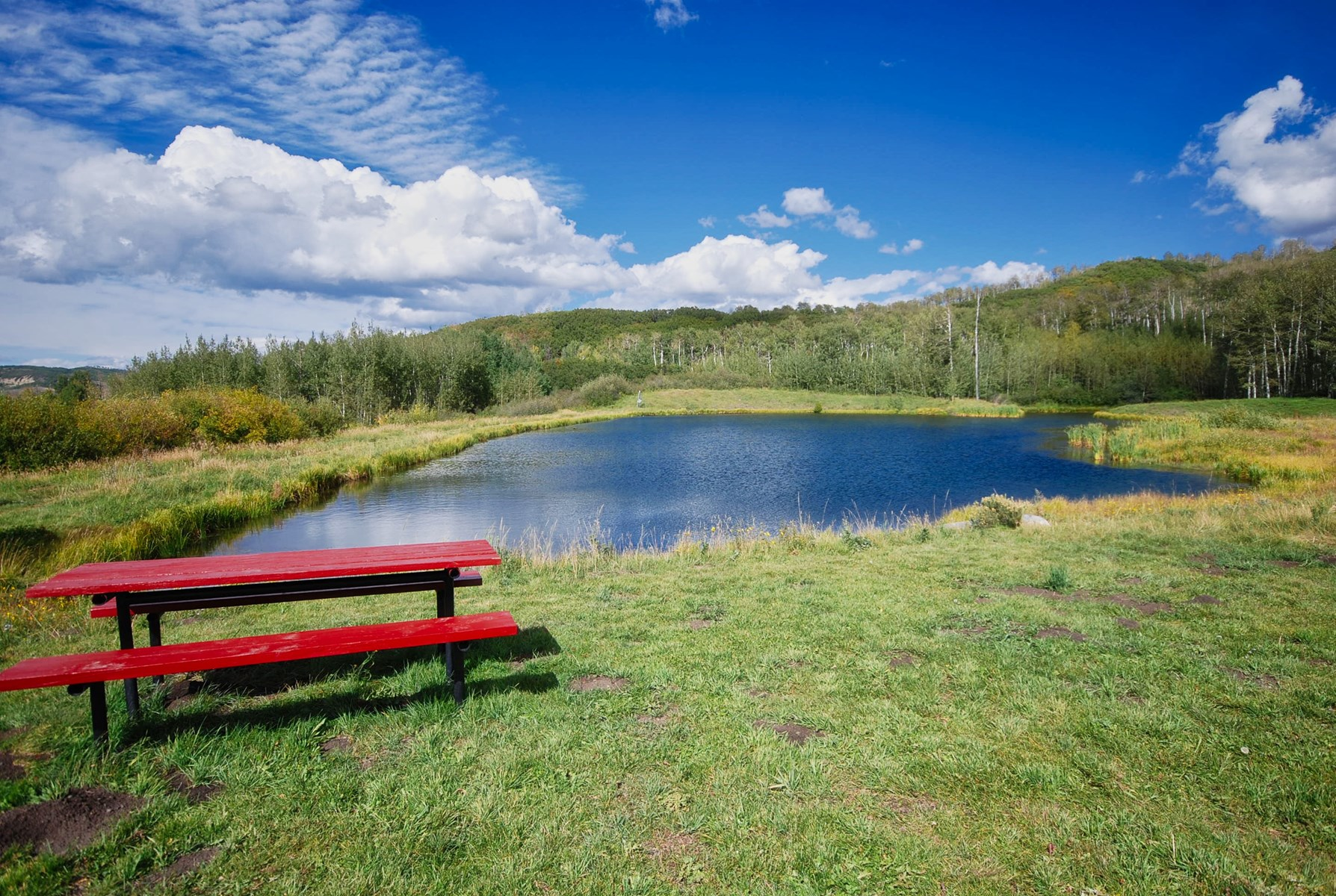 The Community Lake
