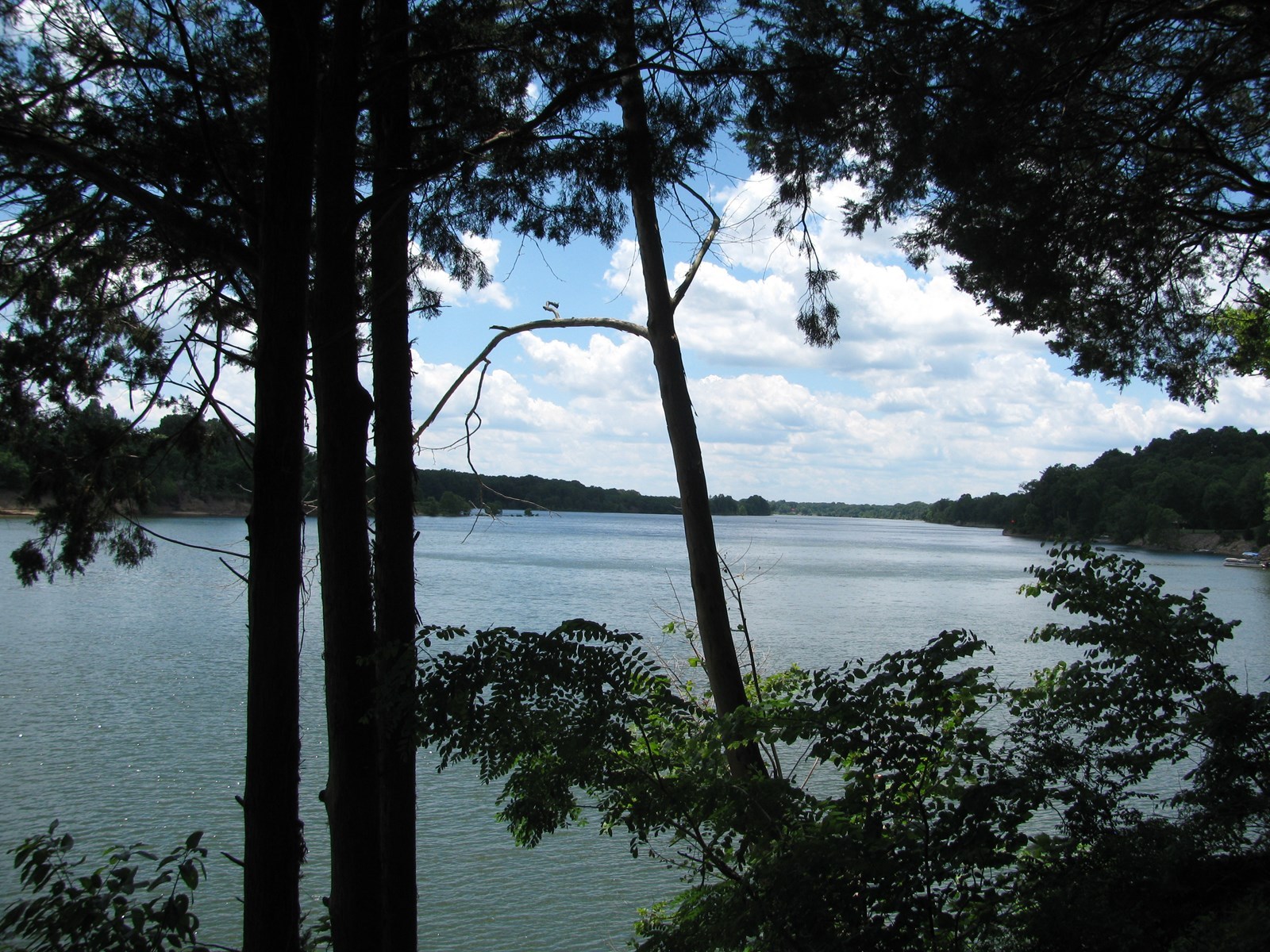 TENNESSEE RIVER LAND FOR SALE NEAR SAVANNAH, TN