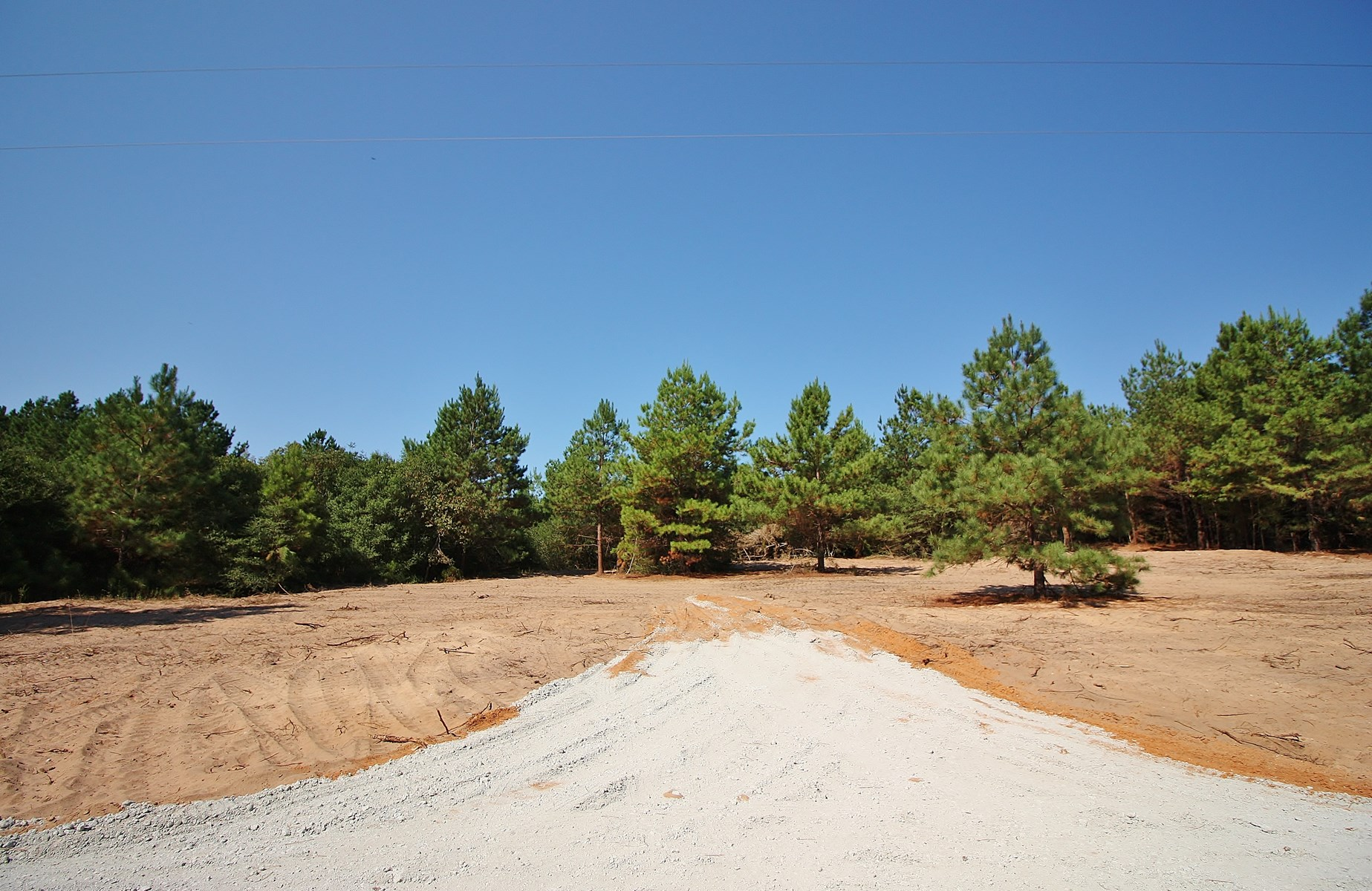 Unrestricted Wooded Land For Sale in Leon Co, TX - 5.01 AC