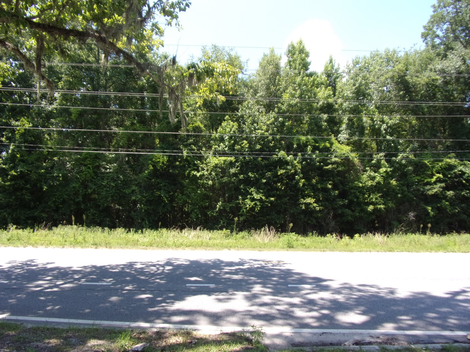 19.7 Wooded Acres with Highway Frontage in Effingham County