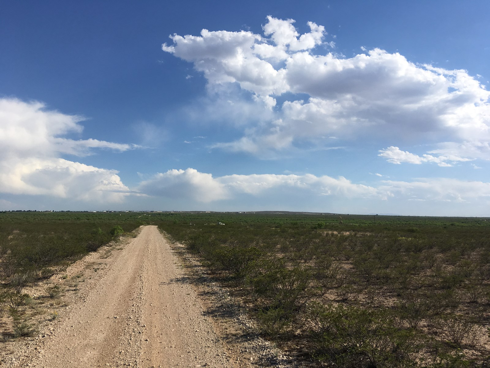 North of Fort Stockton, Texas Acreage
