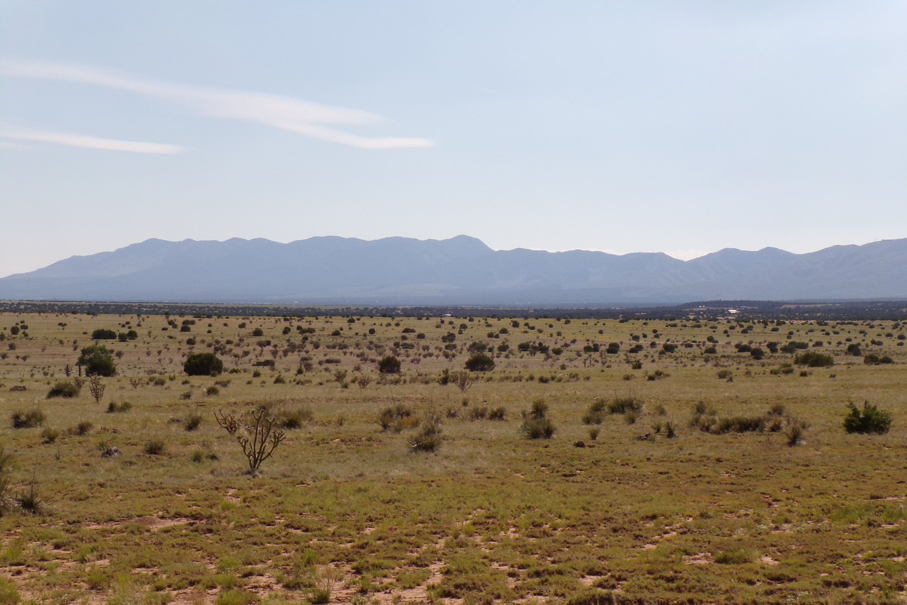 160 Acres Torrance County NM Grazing Land For Sale
