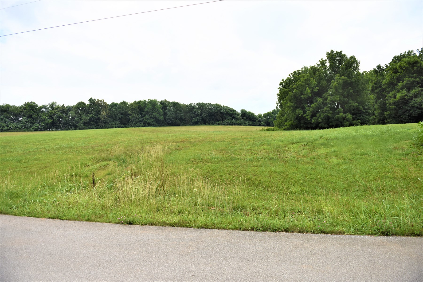 Lot in Wellington Subdivision, Cave City, 0.72 ac, #38
