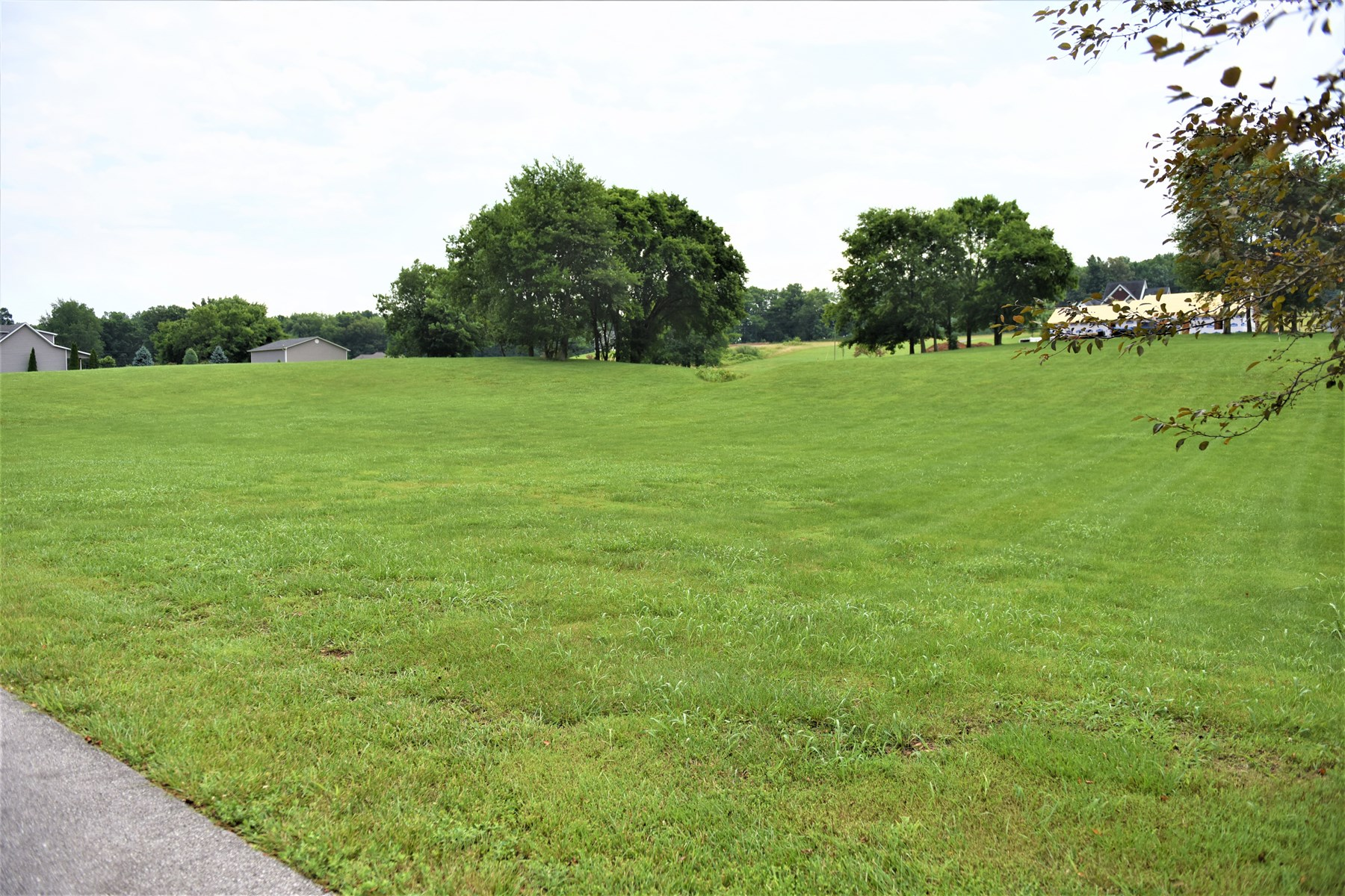 Lot in Wellington Subdivision, Cave City; Lot 61 F - 35