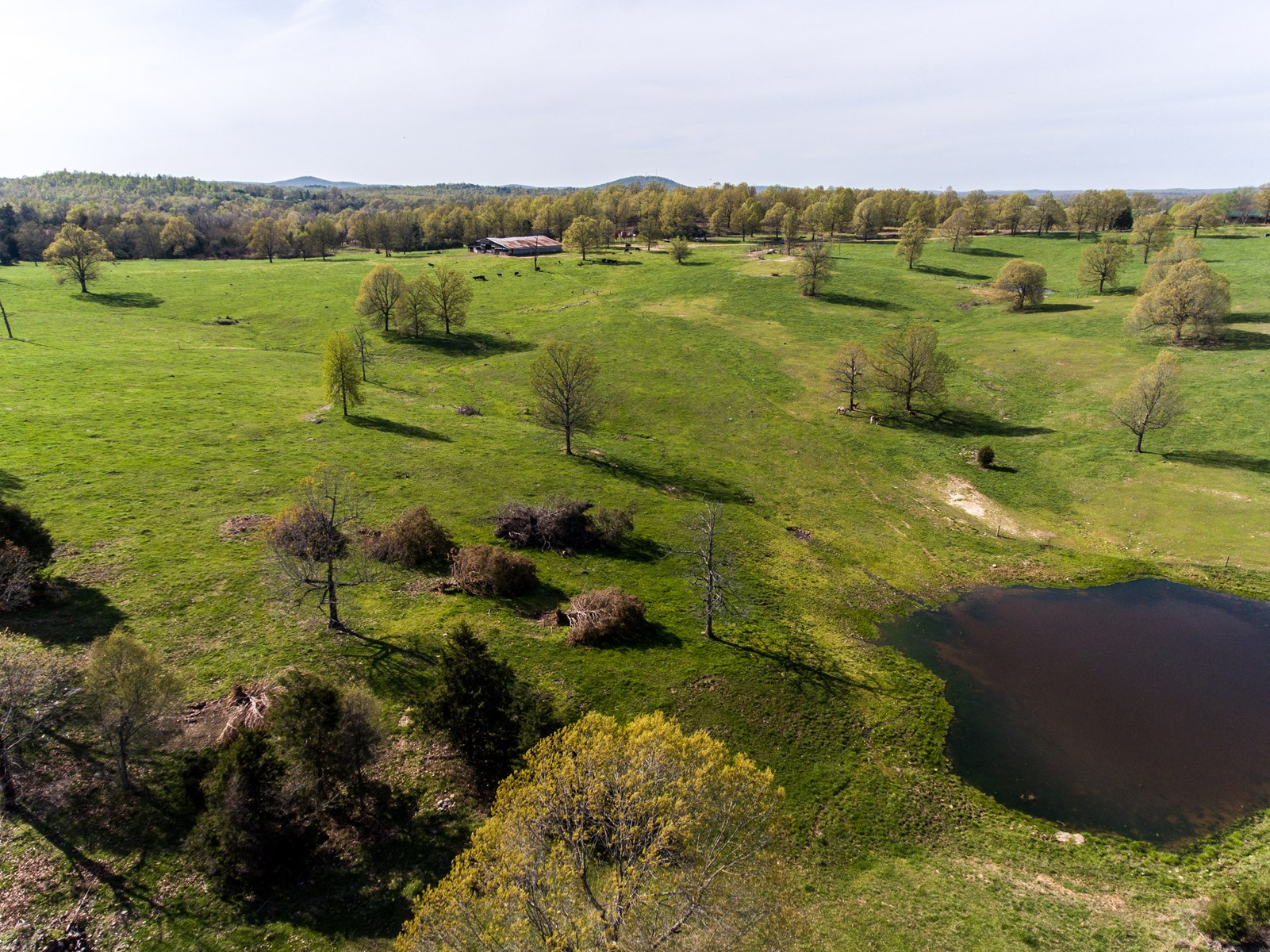Productive Farm & Hunting Land For Sale in Fulton County, AR