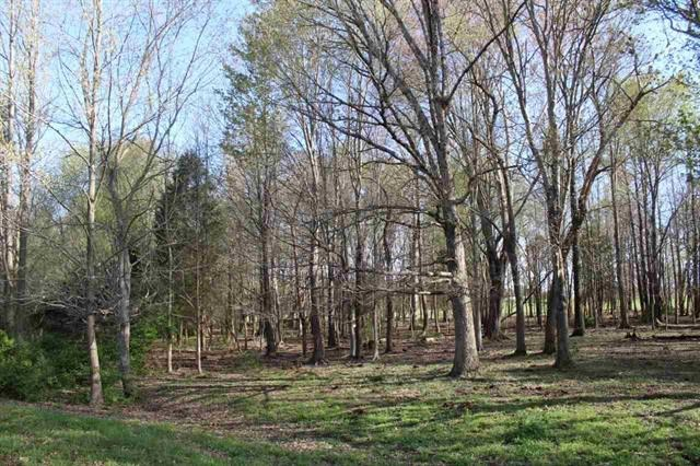 For sale, 6.63 acre lot between Smiths Grove and Glasgow, Ky