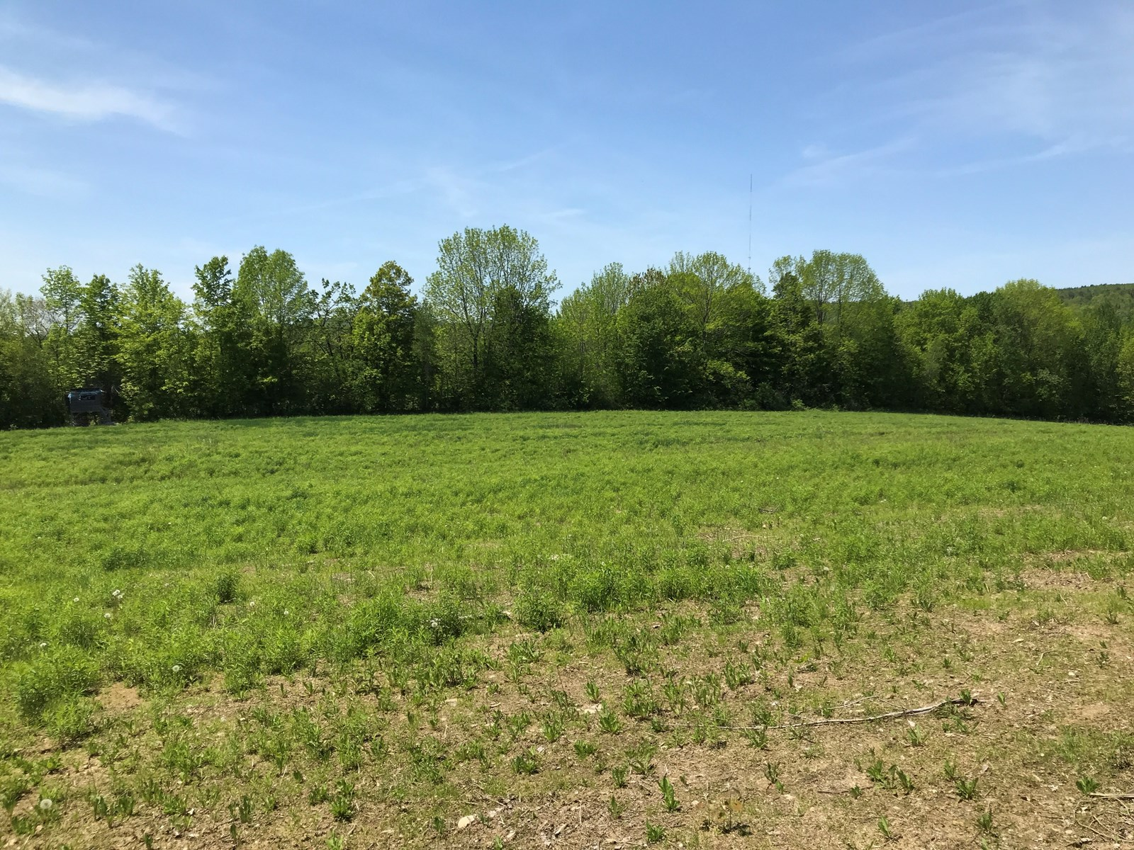 Land For Sale in Garland | Maine Real Estate