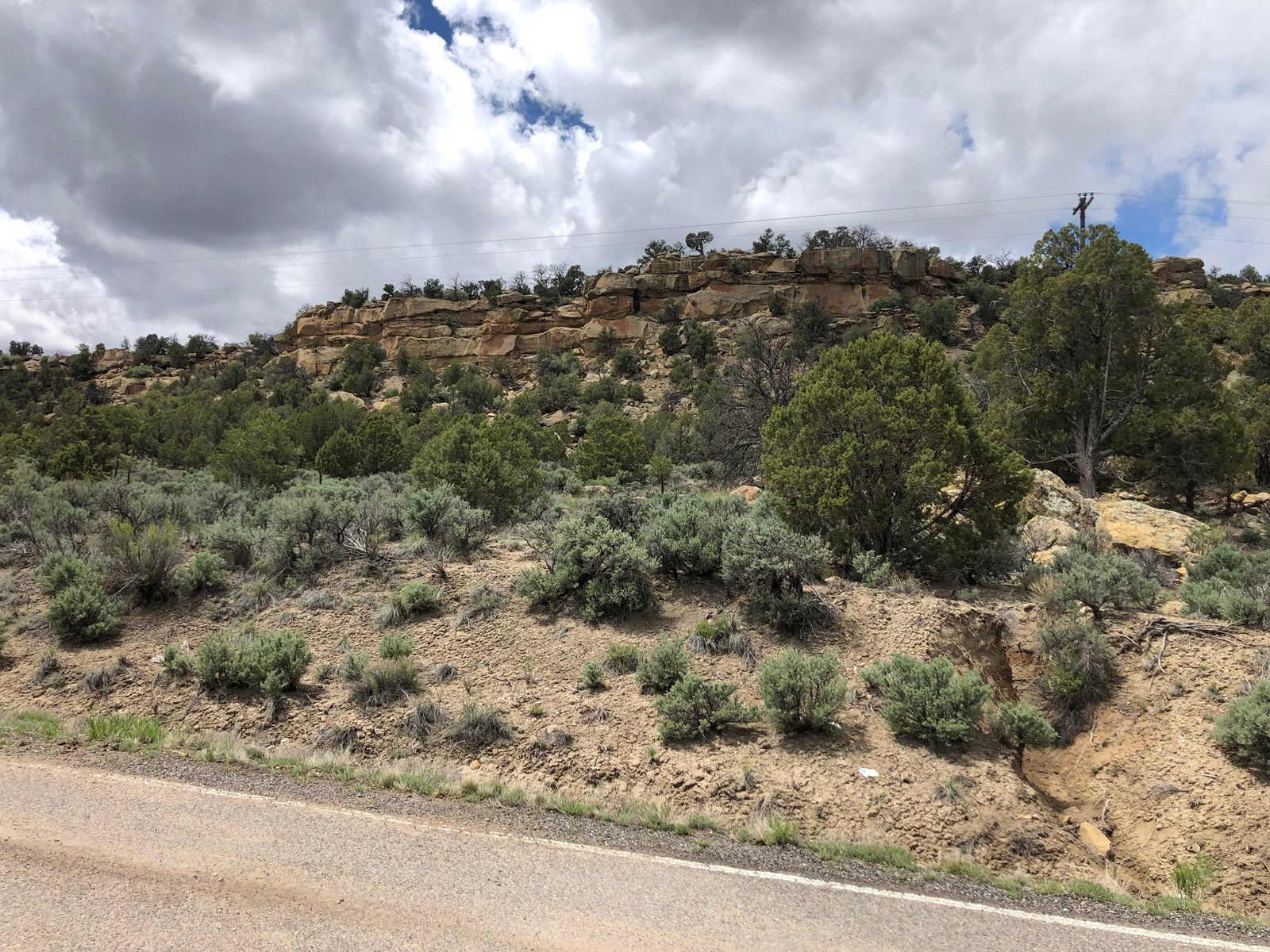 Ecellant Land For Sale near Navajo Lake abundant recreation