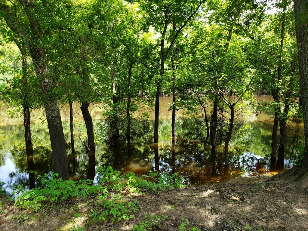 HUNTING AND FISHING RECREATIONAL PROPERTY OUACHITA PARISH