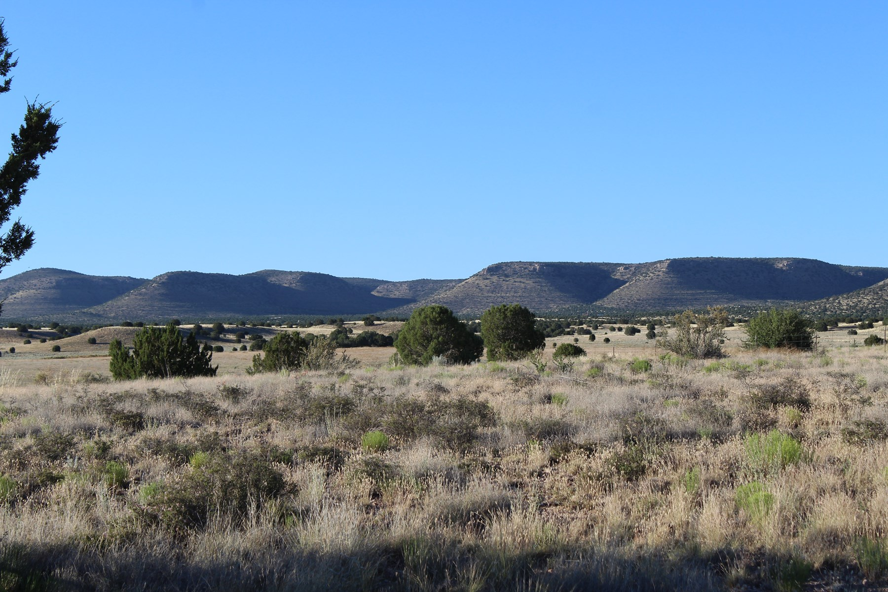 Near Airstrip and borders National Forest, Acreage Paulden