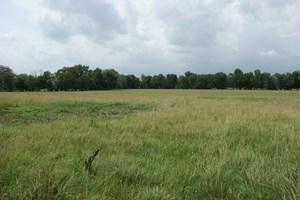 LAND FOR SALE IN VINITA, OKLAHOMA