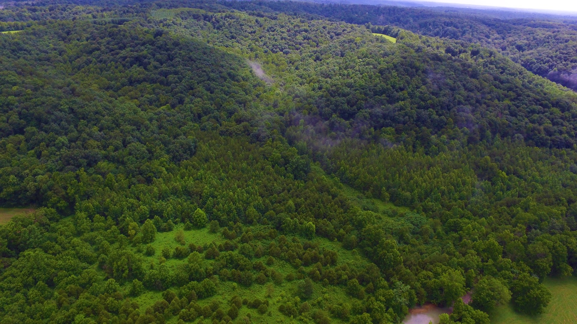80 acre hunting property in south central Kentucky