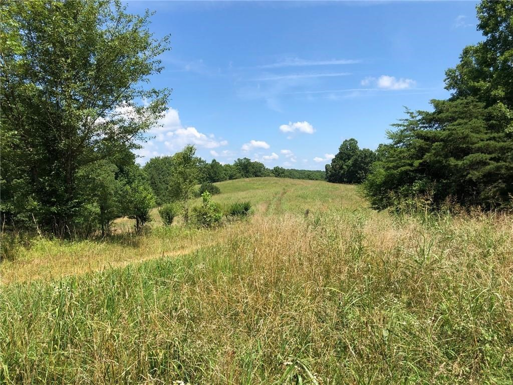 North Georgia Land for sale in Pickens County - 120 Acres