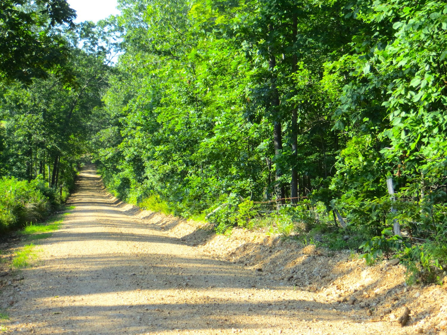Land for Sale in Couch MO