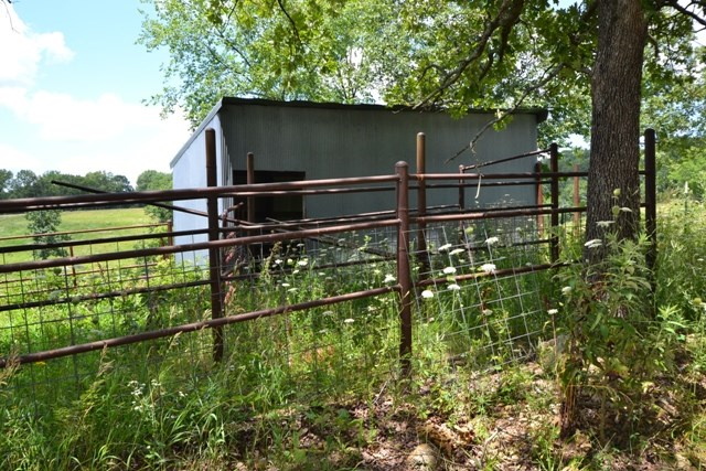 cattle working shed