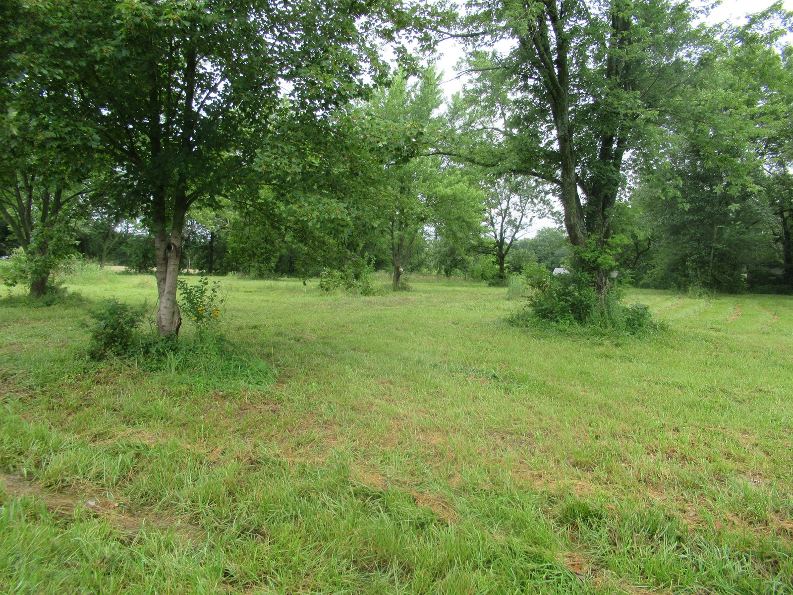 1.3 Acres M/L For Sale In Golden City., Mo.