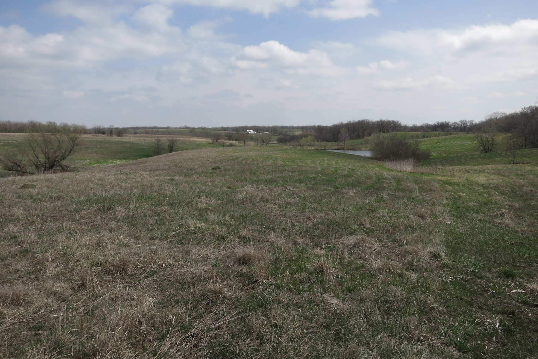 CRP Farm For Sale in NW Missouri