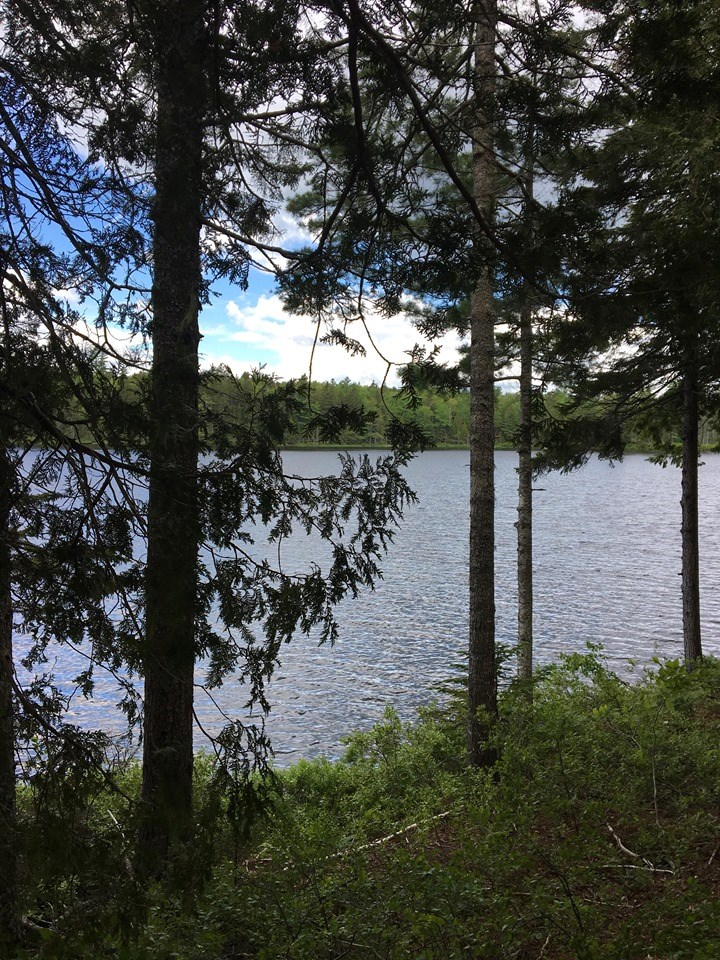 Lakefront Land For Sale in Wesley | Maine Real Estate