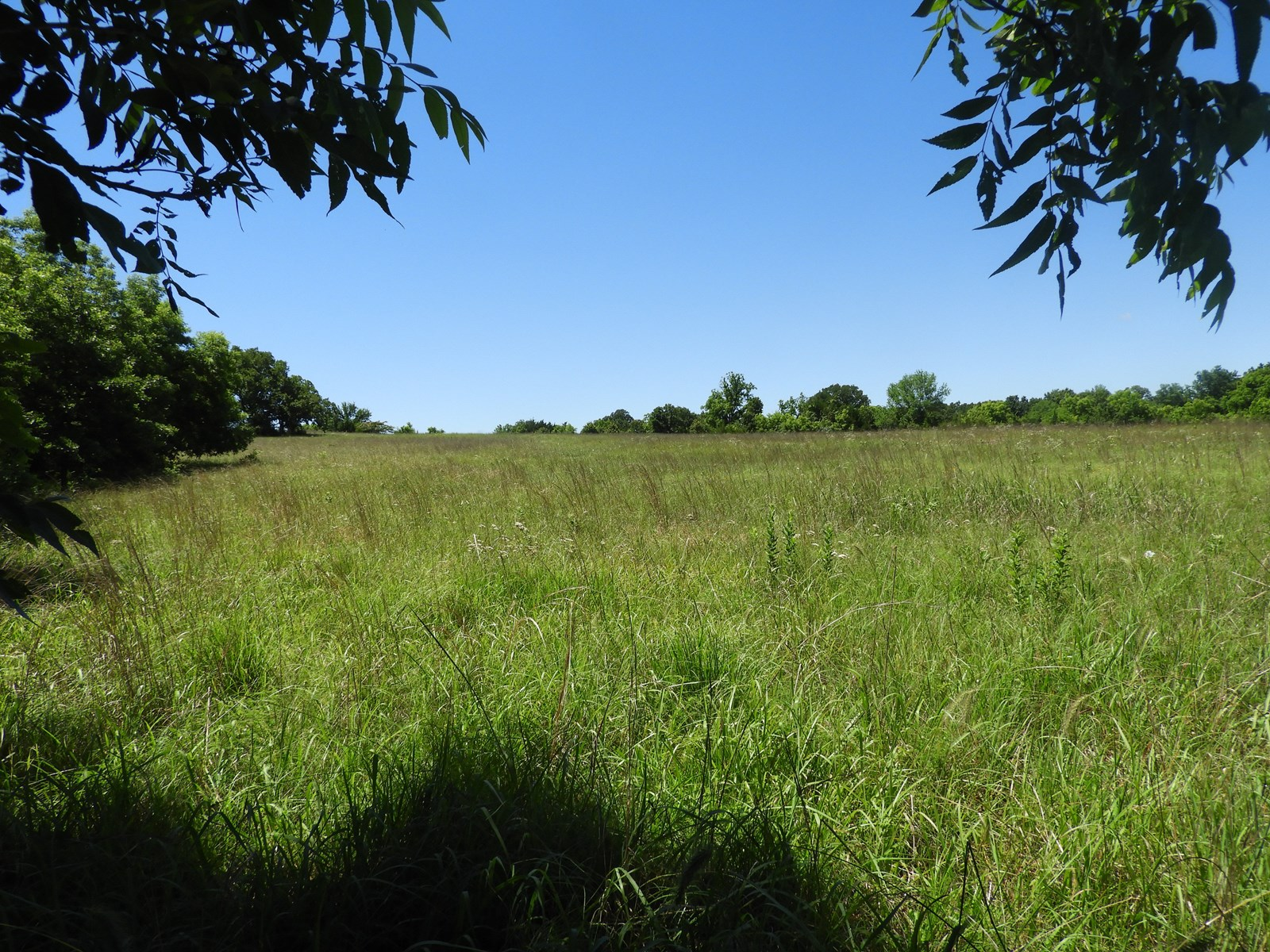 Real Estate Auction, Grassland / Ranch in Chandler - Central Oklahoma